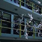 prison breap screencaps003.