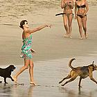 charlize theron beach04