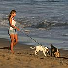 jennifer aniston dogs 14