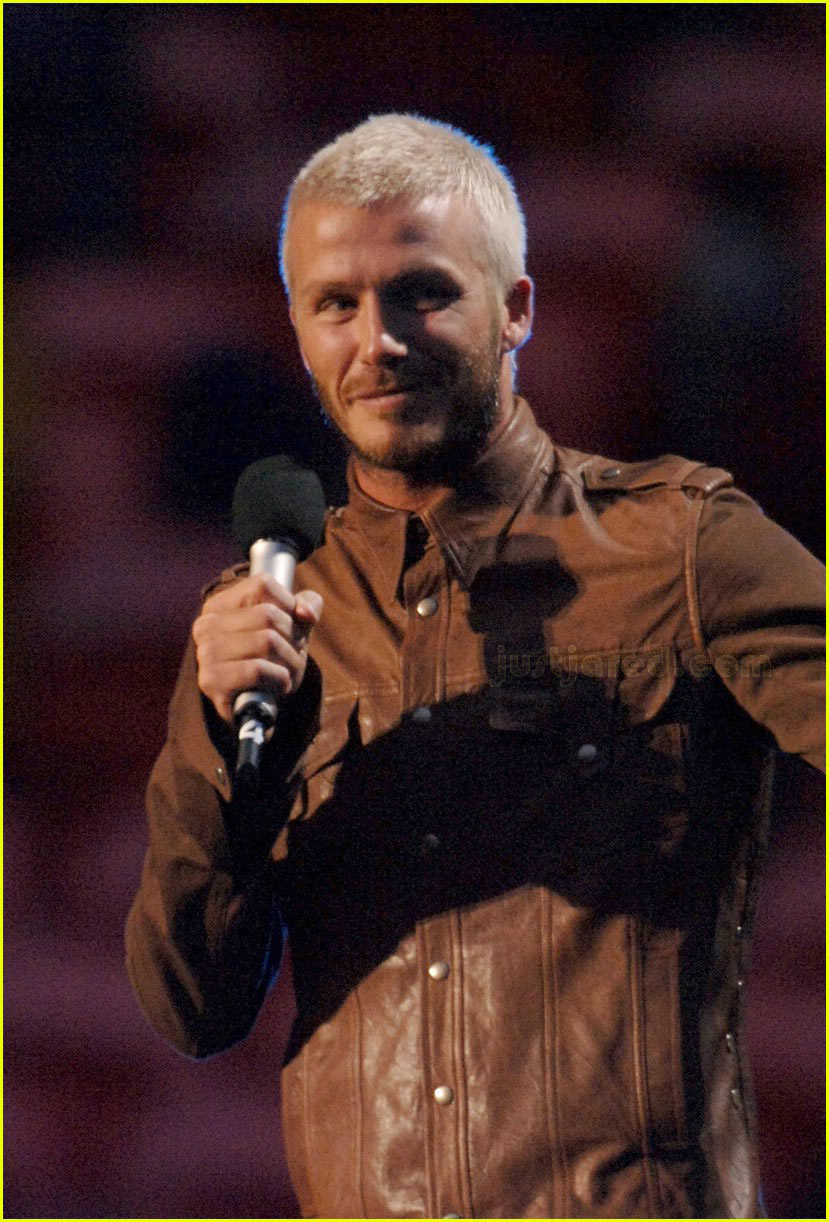 david beckham concert for diana 08