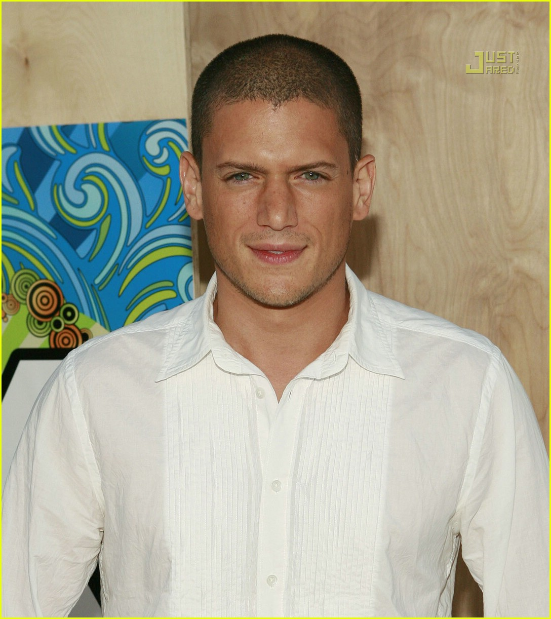 wentworth miller tca party 25