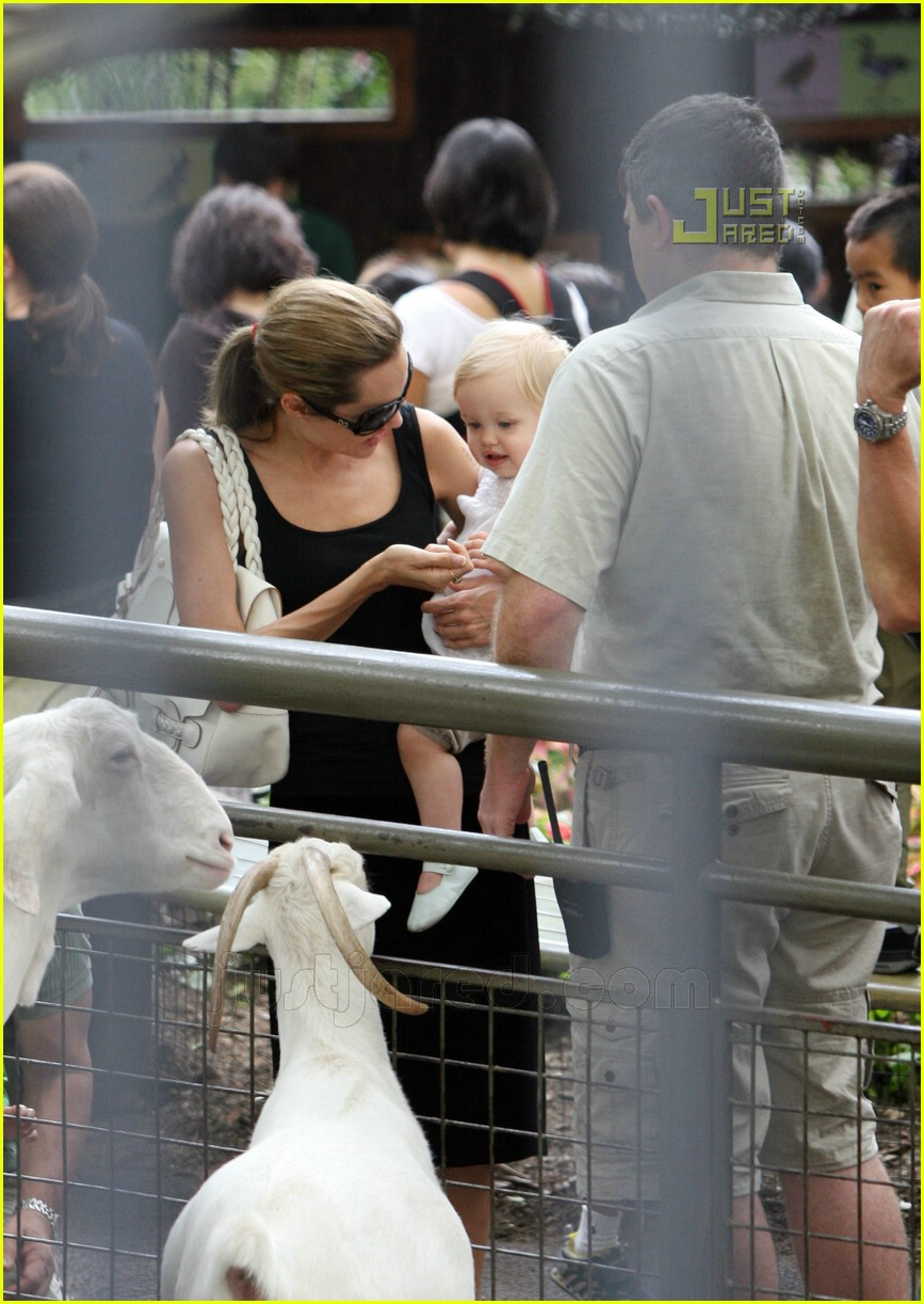 angelina jolie petting zoo 05