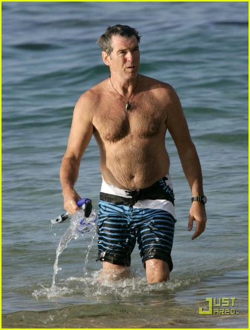 pierce brosnan shirtless 21