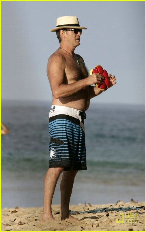 pierce brosnan shirtless 26
