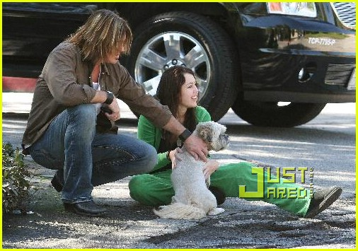 miley cyrus stray dog 26