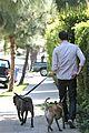adam brody walking dogs 13