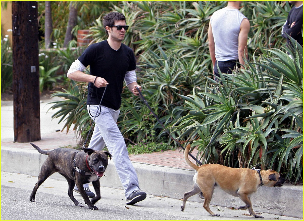 adam brody dogs 031038451