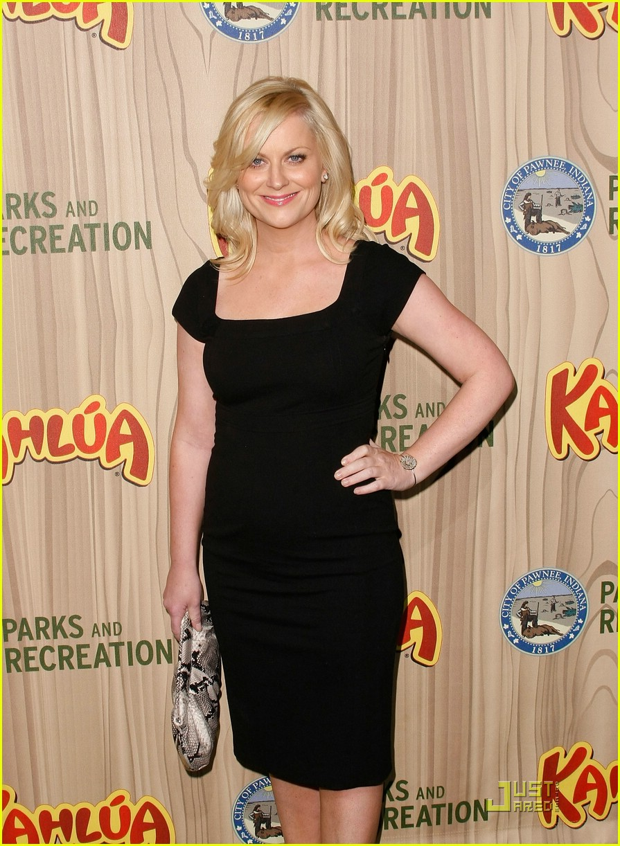 amy poehler parks and recreation 17