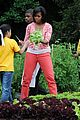 michelle obama white house kitchen garden 11