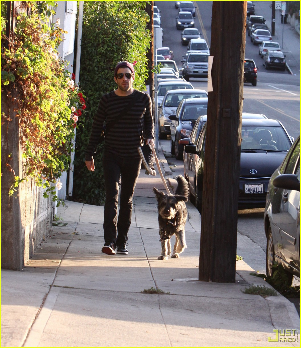 zachary quinto walking dog 01