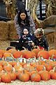 kingston zuma rossdale pick pumpkins 21