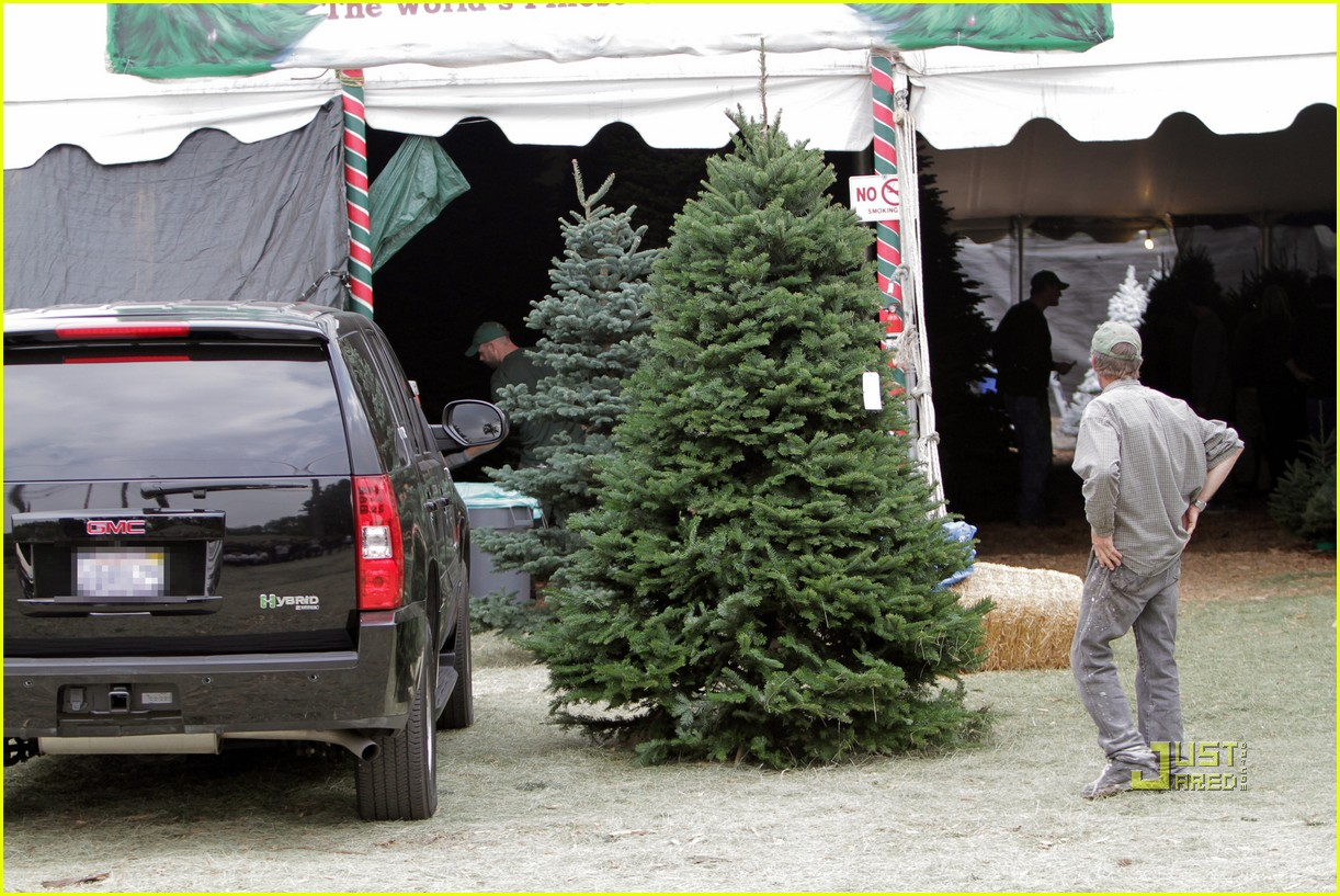 jessica alba christmas tree shopping 08