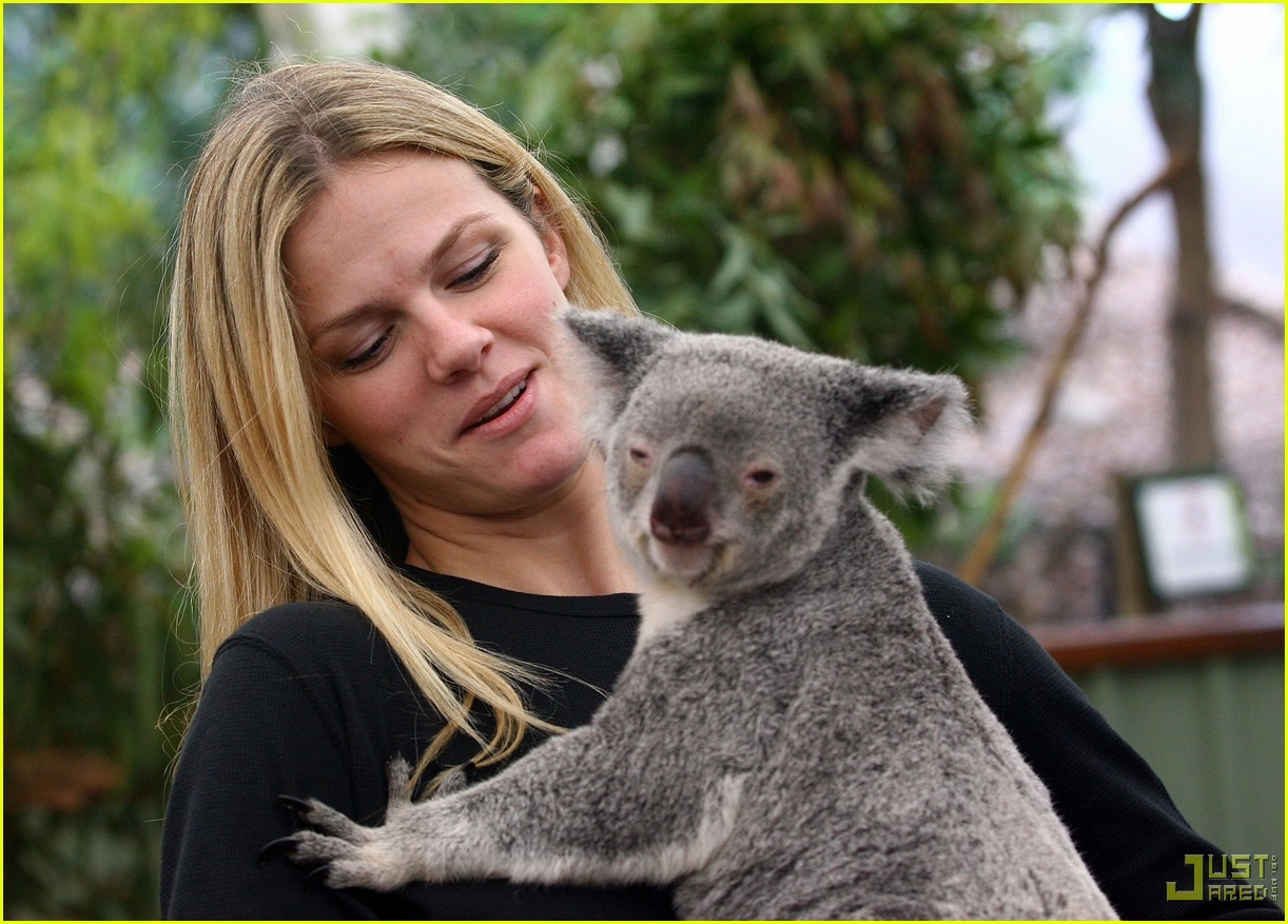 andy roddick brooklyn decker koala couple 10