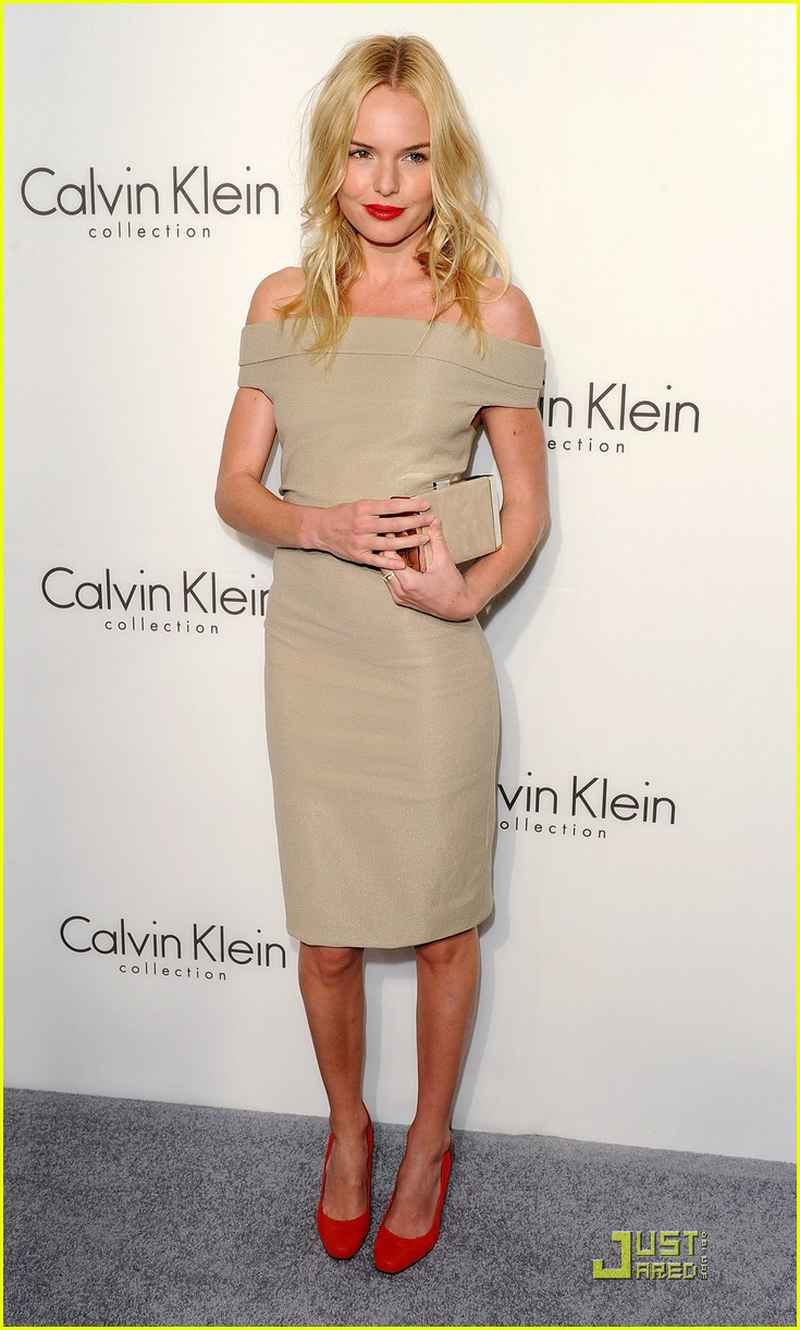 kate bosworth calvin klein collection 14
