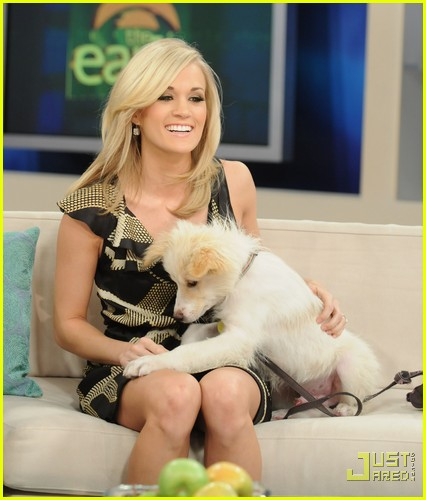 carrie underwood early show pedigree adoption drive 02