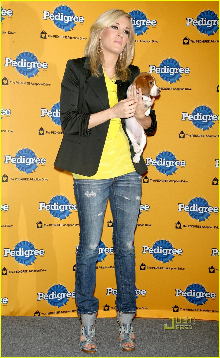 Pics Photos - Pedigree Adoption Drive Super Bowl Commercial Dog Breeds