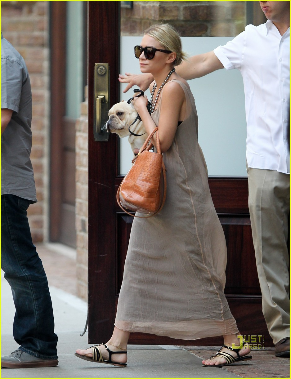 ashley olsen french bulldog 04