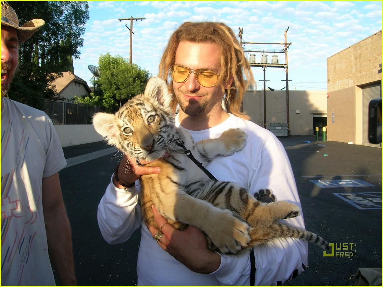 bradley cooper dreadlocks tiger cub 08