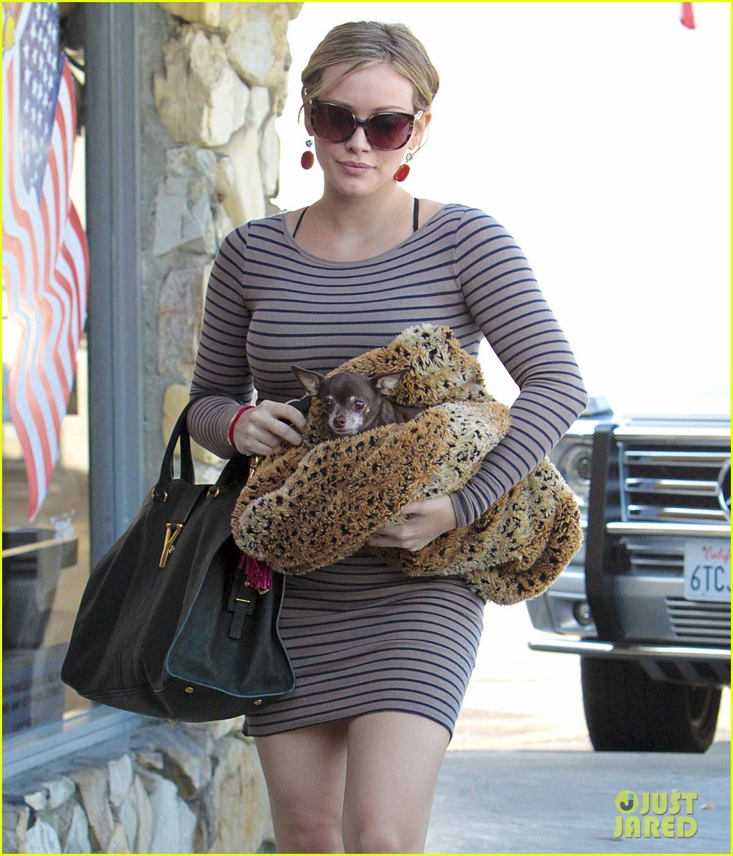 Hilary Duff Visits The Vet: Photo 2591091