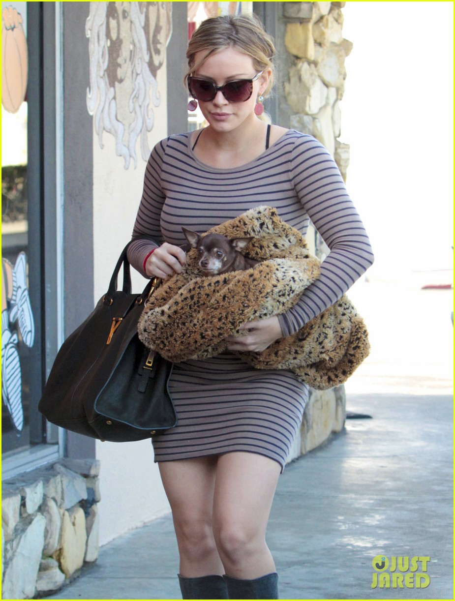 hilary duff dog vet 14