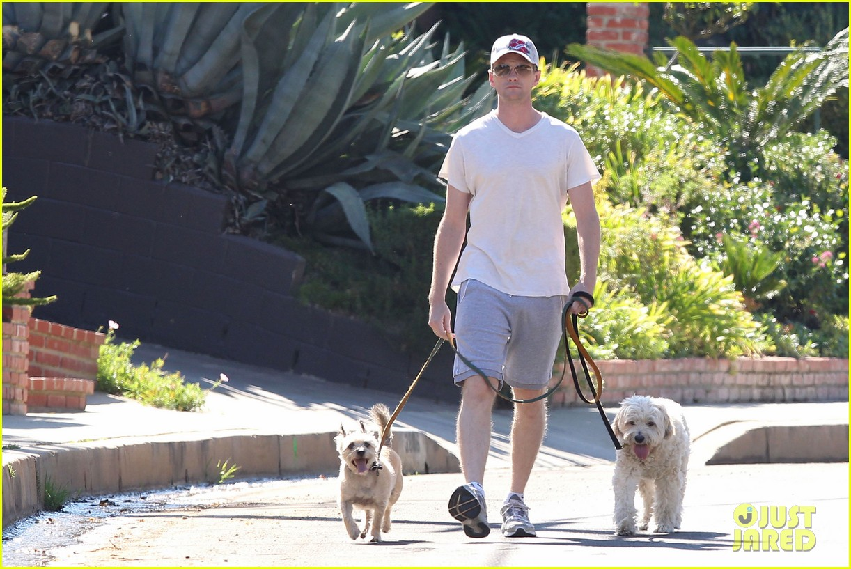 neil patrick harris dog walking 032585965
