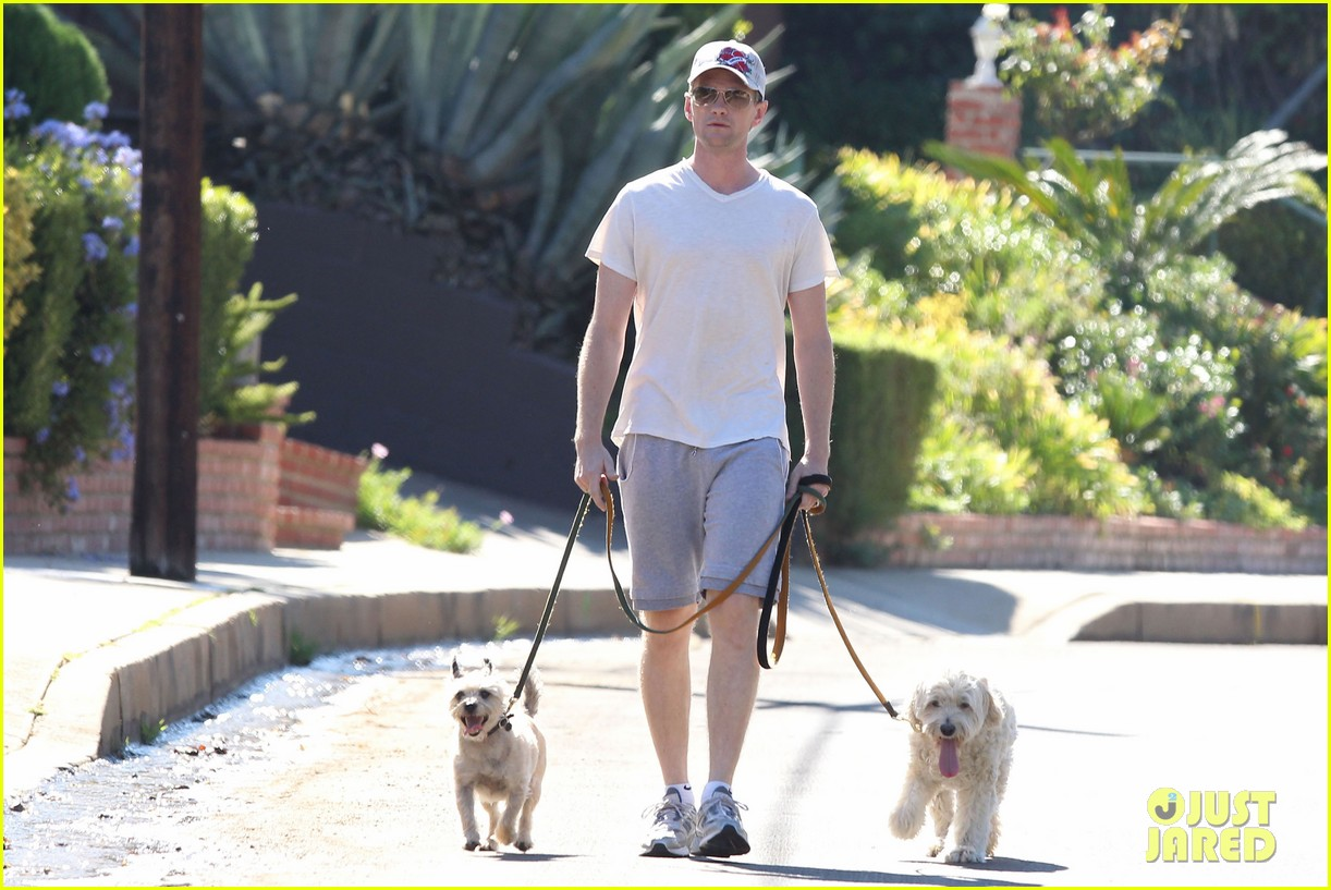 neil patrick harris dog walking 062585968