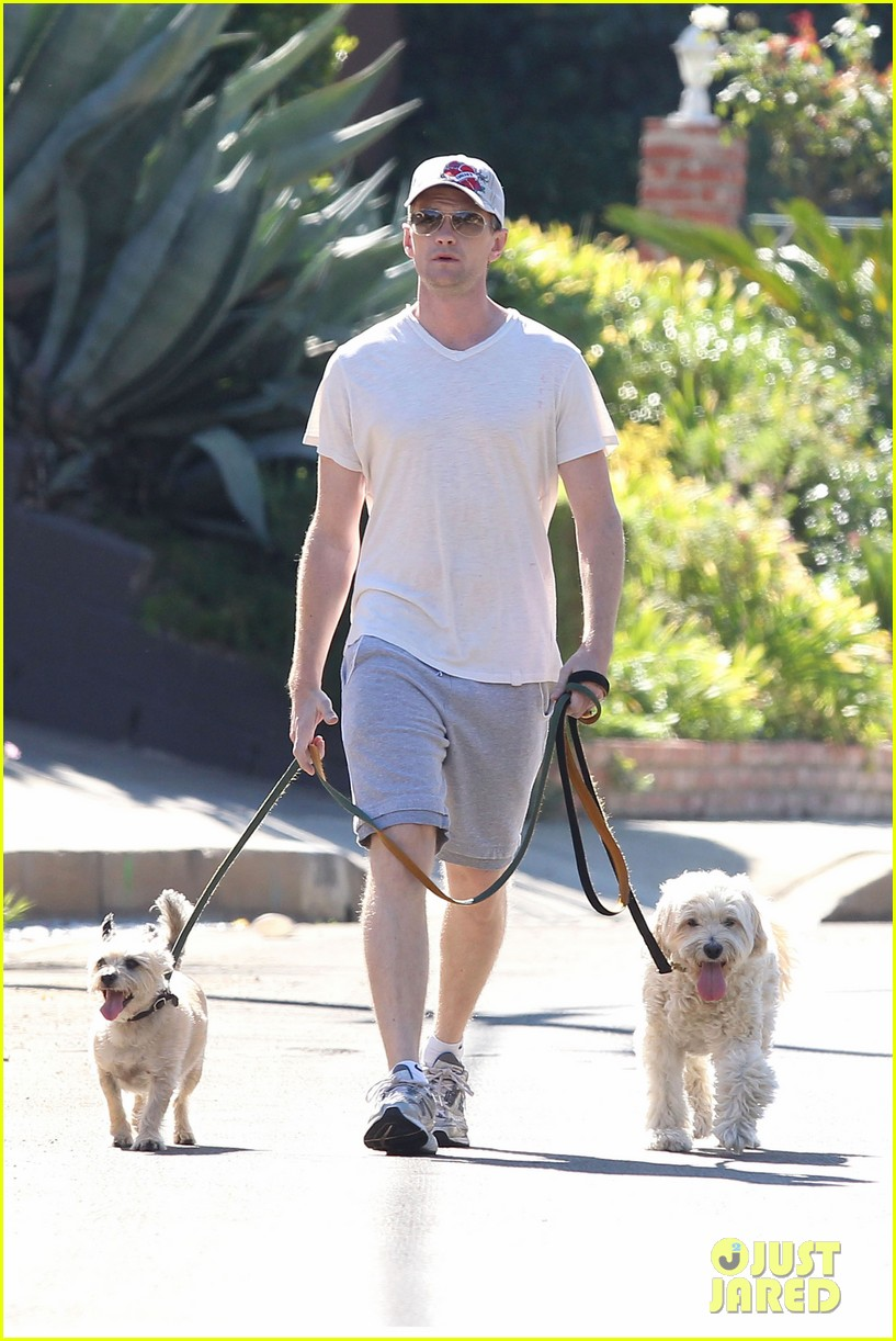 neil patrick harris dog walking 09