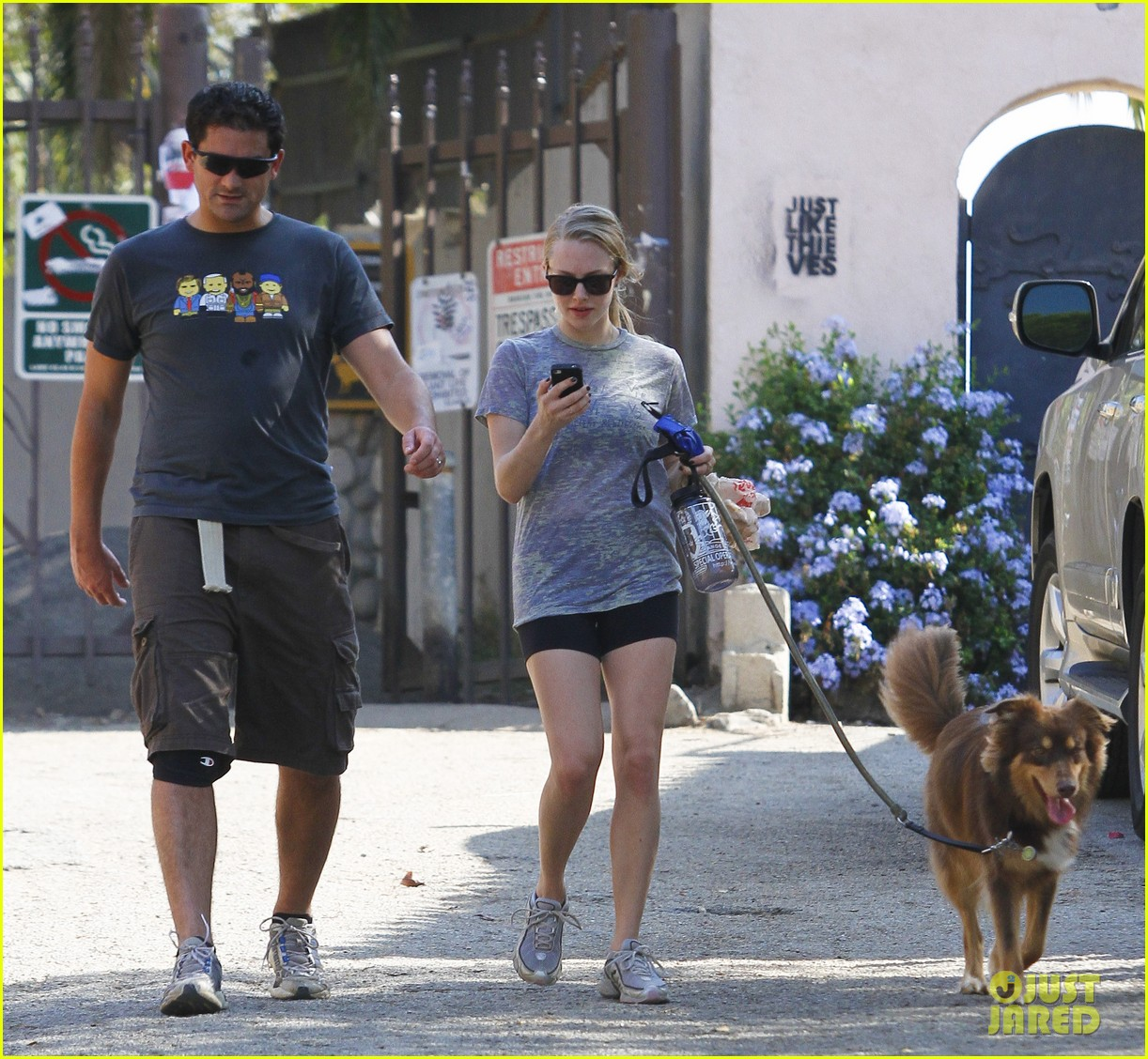 amanda seyfried dog walk friend 18