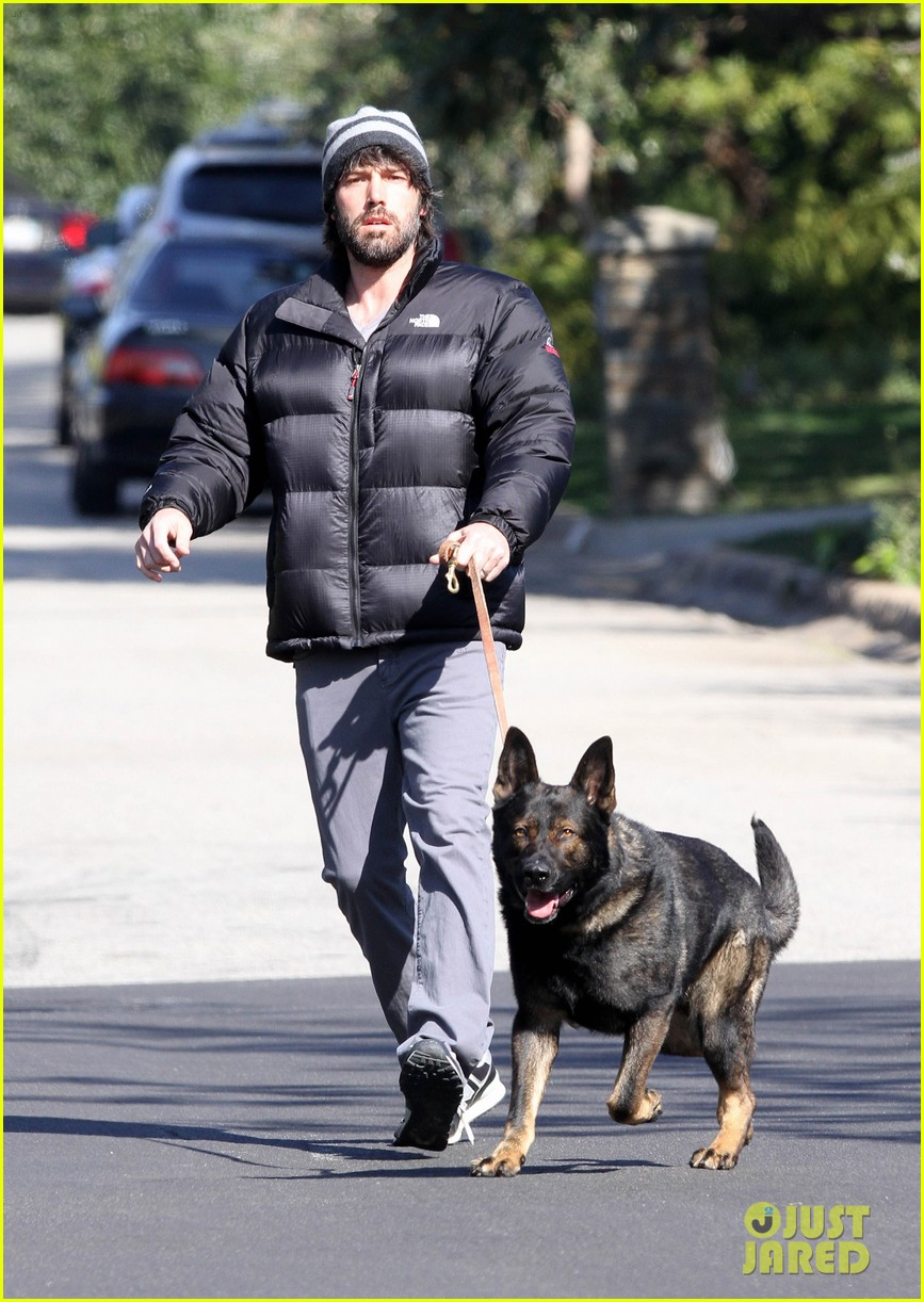 jennifer garner pregnant errands ben affleck walking dog 04
