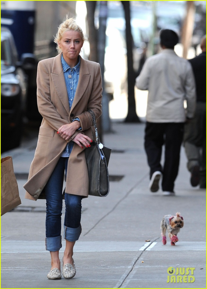 amber heard spy day with pink pooch 01