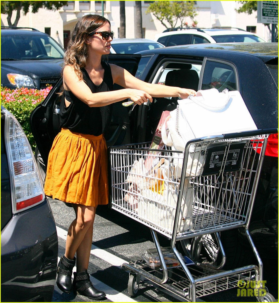 rachel bilson whole foods grocery shopping 022689557