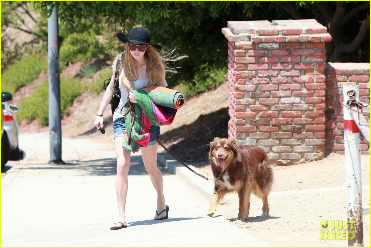 amanda seyfried park with flynn 07