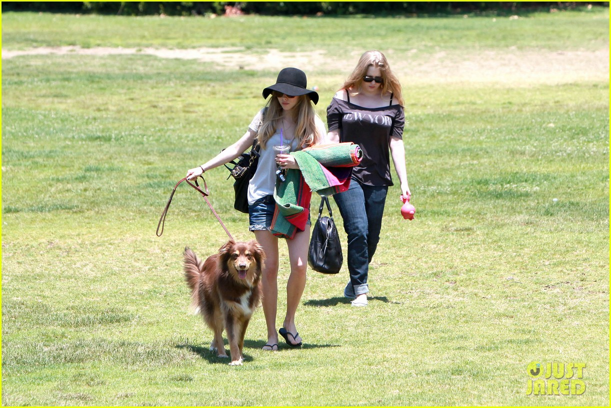 amanda seyfried park with flynn 11