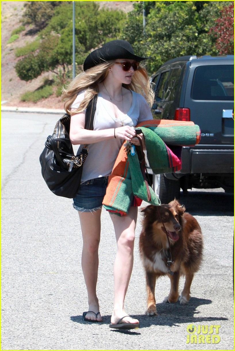amanda seyfried park with flynn 122682822