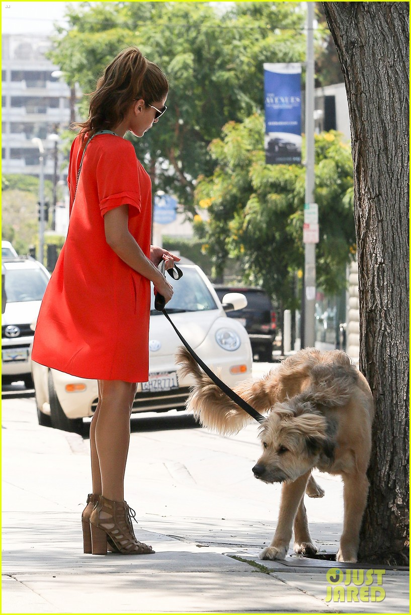 eva mendes beverly hills dog walker 062696061