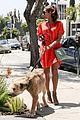 eva mendes beverly hills dog walker 12