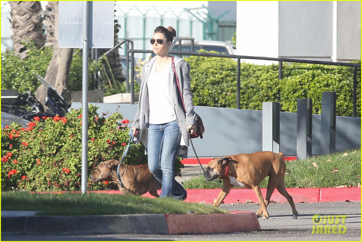 jessica biel dog walk before private plane departure 05
