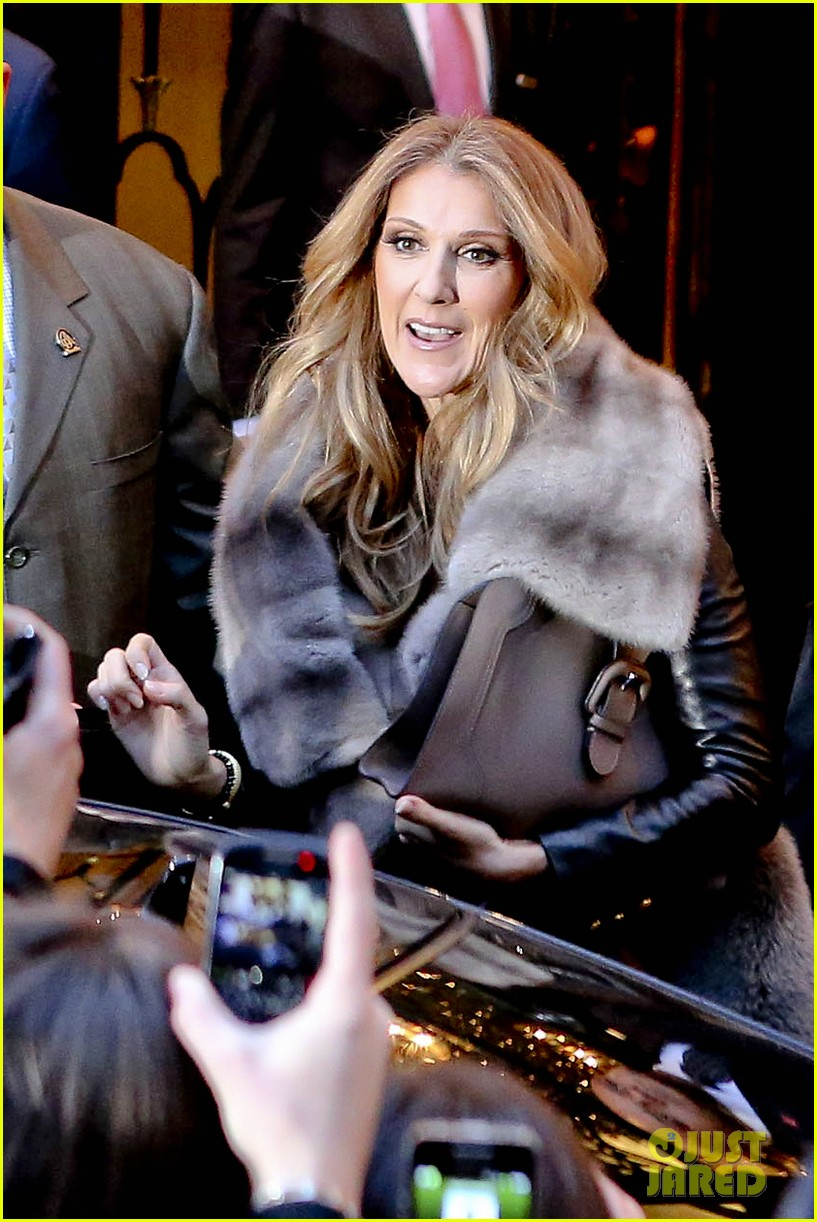 celine dion i took a chance with las vegas residency 15