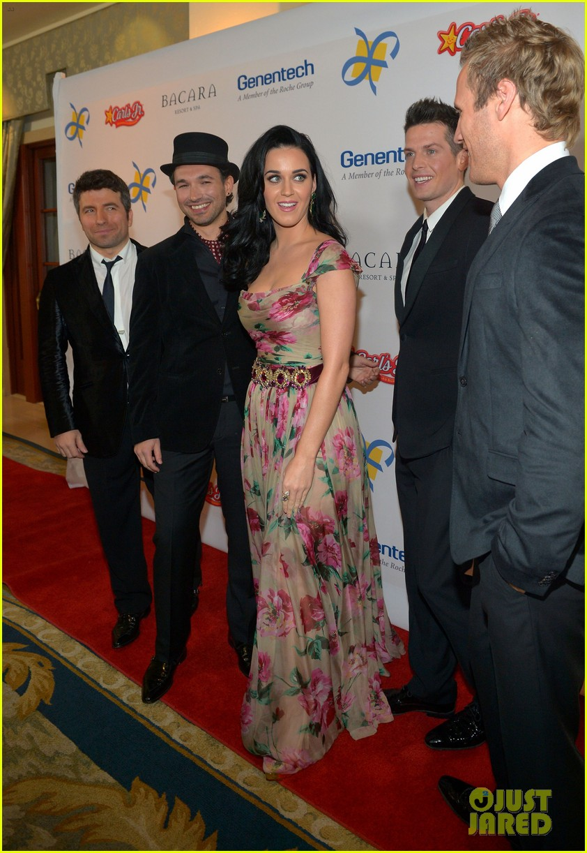 katy perry dream foundation celebration of dreams 13