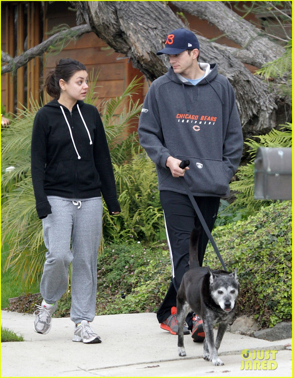 mila kunis ashton kutcher dog walk 13