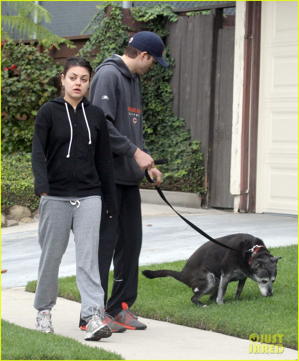 mila kunis ashton kutcher dog walk 17