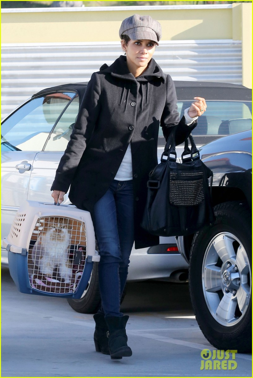 halle berry back at the vet with pet cat 012801863