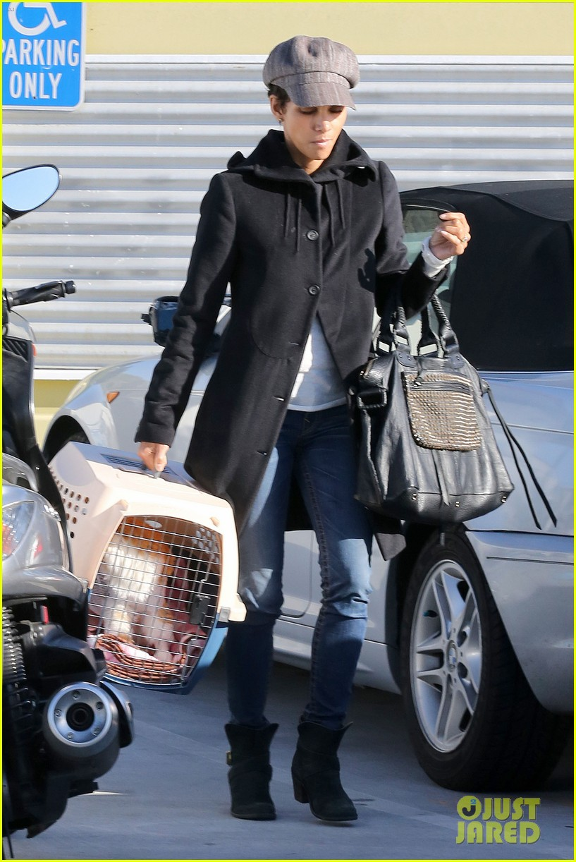 halle berry back at the vet with pet cat 08