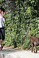 anne hathaway saturday stroll with esmeralda 05