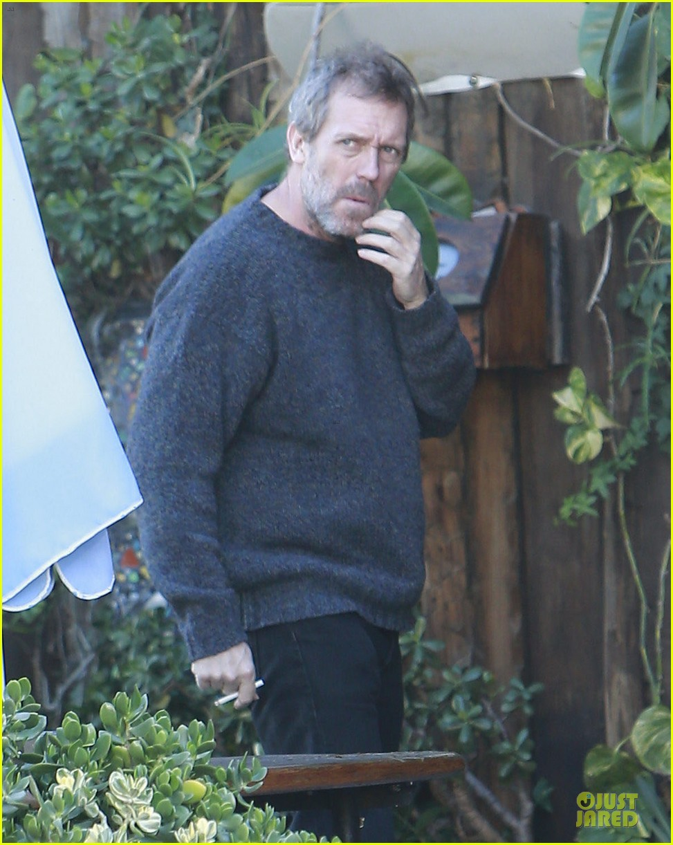 the oranges director fought for hugh laurie 022783325