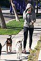 miley cyrus hoodie walk with pet pooch 11