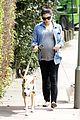 jenna dewan baby bump dog walk 07