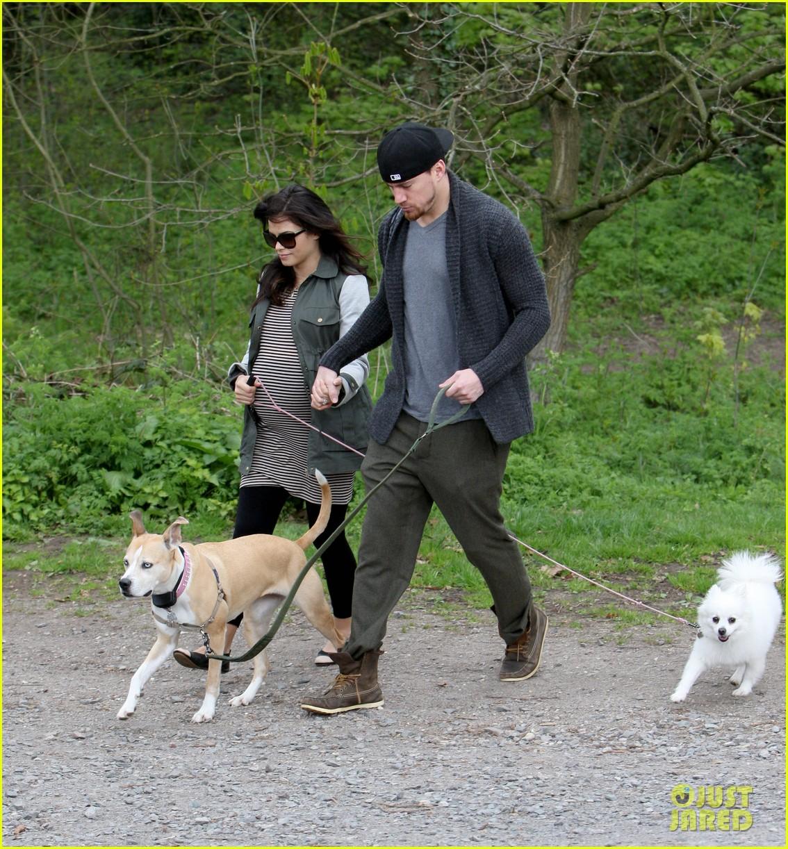 channing tatum pregnant jenna dewan london dog walk 012860566
