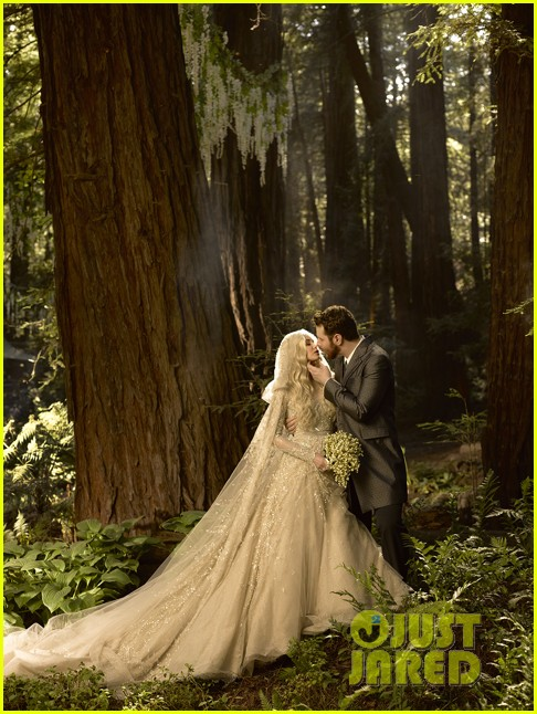sean parker alexandra lenas wedding photo 012882975
