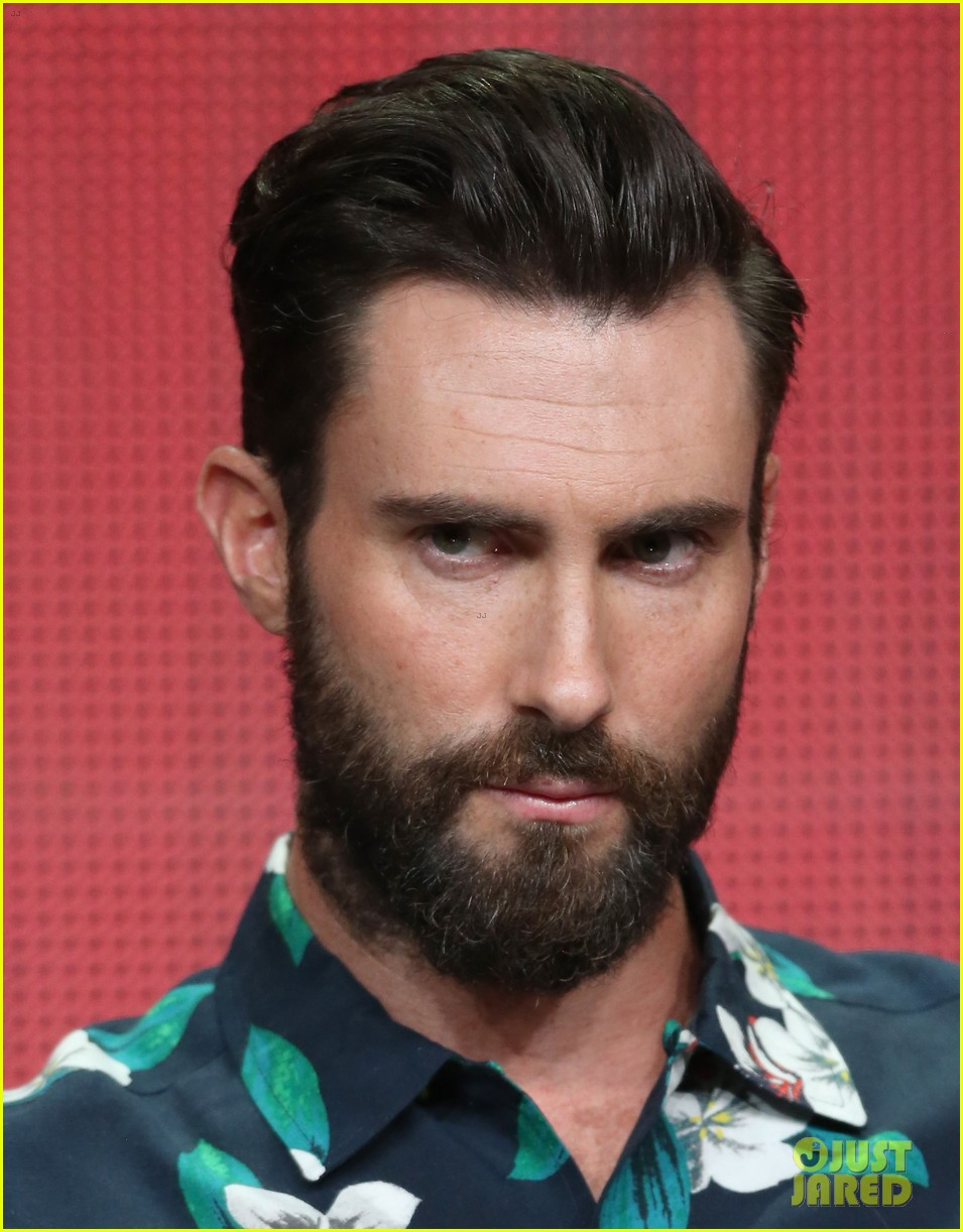 adam levine cee lo green nbc summer tca tour event 122918265
